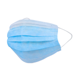 3-Ply Disposable Earloop Mask
